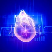 Virtual image of human heart with cardiogram