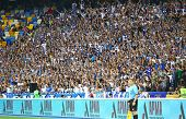 Fc Dynamo Kyiv Team Supporters