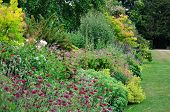 Verdant English Garden Border