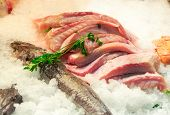 Fillet of fish on ice in seafood market
