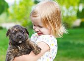stock photo of puppy dog face  - Cute little girl hugging dog puppy - JPG