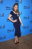 Amanda Fuller at the Disney/ABC Summer 2013 TCA Press Tour, Beverly Hilton, Beverly Hills, CA 08-04-