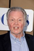 Jon Voight at the CBS, Showtime, CW 2013 TCA Summer Stars Party, Beverly Hilton Hotel, Beverly Hills, CA 07-29-13
