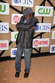Garrett Morris at the CBS, Showtime, CW 2013 TCA Summer Stars Party, Beverly Hilton Hotel, Beverly Hills, CA 07-29-13