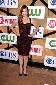 Alyson Hannigan at the CBS, Showtime, CW 2013 TCA Summer Stars Party, Beverly Hilton Hotel, Beverly
