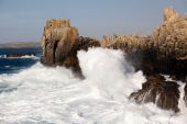 Ocean Tempest