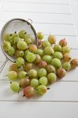 Organic green gooseberries
