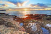 Red And Green Algae Covered Rocks At Sunrise  Coogee, Sydney Australia