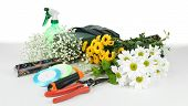 Composition with florist tools isolated on white