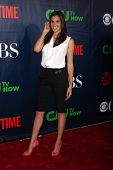 LOS ANGELES - JUL 17:  Daniela Ruah at the CBS TCA July 2014 Party at the Pacific Design Center on J