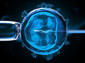 pic of insemination  - 3d version of artificial insemination  - JPG