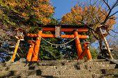 Torii At Entrance Of Chureito Peace Pagoda