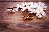 picture of ring  - Flowering branch with white delicate flowers on wooden surface - JPG