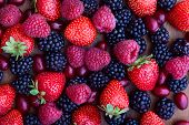 foto of dogwood  - strawberries dogwood and raspberries top view close - JPG