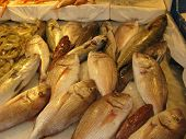 Fresh Fish on the Sicilian Market