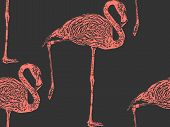 vector vintage illustration of a pink flamingo. seamless animal