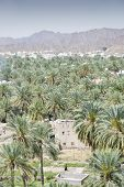 View From Fort Nizwa