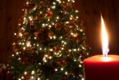 Red candle with a Christmas tree in the background