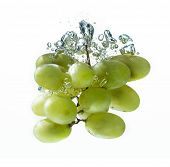 Green Grape In Water Splash