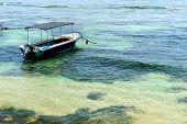 Boat In Tropical Sea