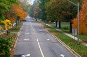stock photo of tree lined street  - Fall colours on a tree lined street in Fredericton New Brunswick - JPG