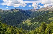 Trentino - Pejo Valley Overview