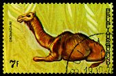 Vintage  Postage Stamp. Animals Burundi, Dromadaire.