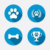 pic of petting  - Pets icons - JPG