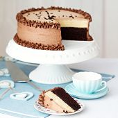stock photo of sponge-cake  - Chocolate layer cake on a cake stand - JPG