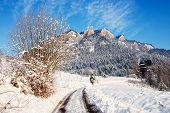 image of pieniny  - Winter Landscape In Pieniny Mountains Three Crowns Poland - JPG