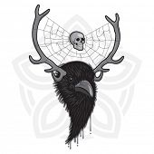 picture of raven  - Horned Head of Raven Bird with Spider Web and Skull - JPG