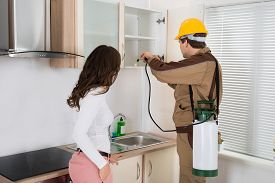 image of pesticide  - Woman Standing Near The Young Worker With Flashlight Spraying Pesticide On Shelf In Kitchen - JPG