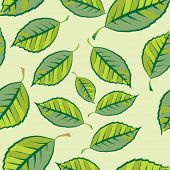 Background from leaves. Seamless pattern. Vector.
