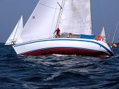 pic of sail-boats  - sailing in a championship  - JPG