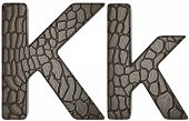Alligator Skin Font K Lowercase And Capital Letters