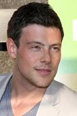 LOS ANGELES - JUL 27:  Cory Monteith arrives at Fox's