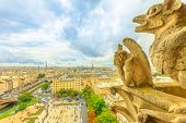 The Gargoyles Of Notre Dame Cathedral From Aerial View On Paris Skyline. Paris City Capital Of Franc poster