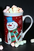 stock photo of hot-chocolate  - A nice warm treat on a cold winter day - JPG