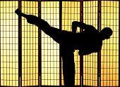 Man practising a martial art kung fu kick