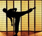 Man practicing a martial art kung fu kick