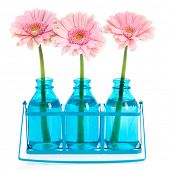 image of flower arrangement  - Pink Gerber in blue vases in metal rack - JPG
