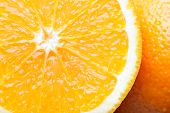 Oranges close-up