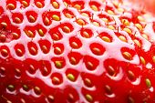 Strawberry macro, may be used as background. Shallow DOF!