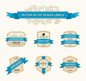 Vector set vintage ornate decor elements. ornaments ribbon blue labels illustration