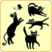 Black cats - vector set.