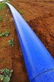 pic of underground water  - A blue water pipe resting on red soil before being buried underground - JPG