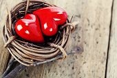 Two red hearts in bird's nest on wooden board- yin-yang and Valentine concept