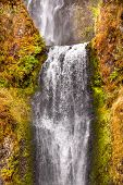 Multnomah Falls Waterfall Columbia River Gorge Oregon Pacific Northwest