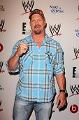 LOS ANGELES - AUG 15:  Steve Austin at the Superstars for Hope honoring Make-A-Wish at the Beverly H