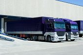 Purple Trucks
